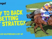 Betfair trading | Lay to back (L2B) strategy | Fully automated bot